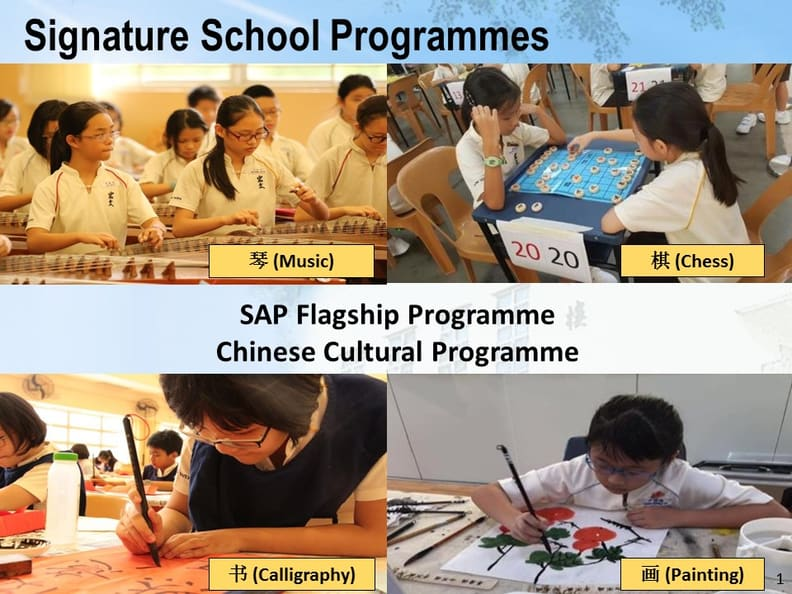 Signature School Programmes Resized